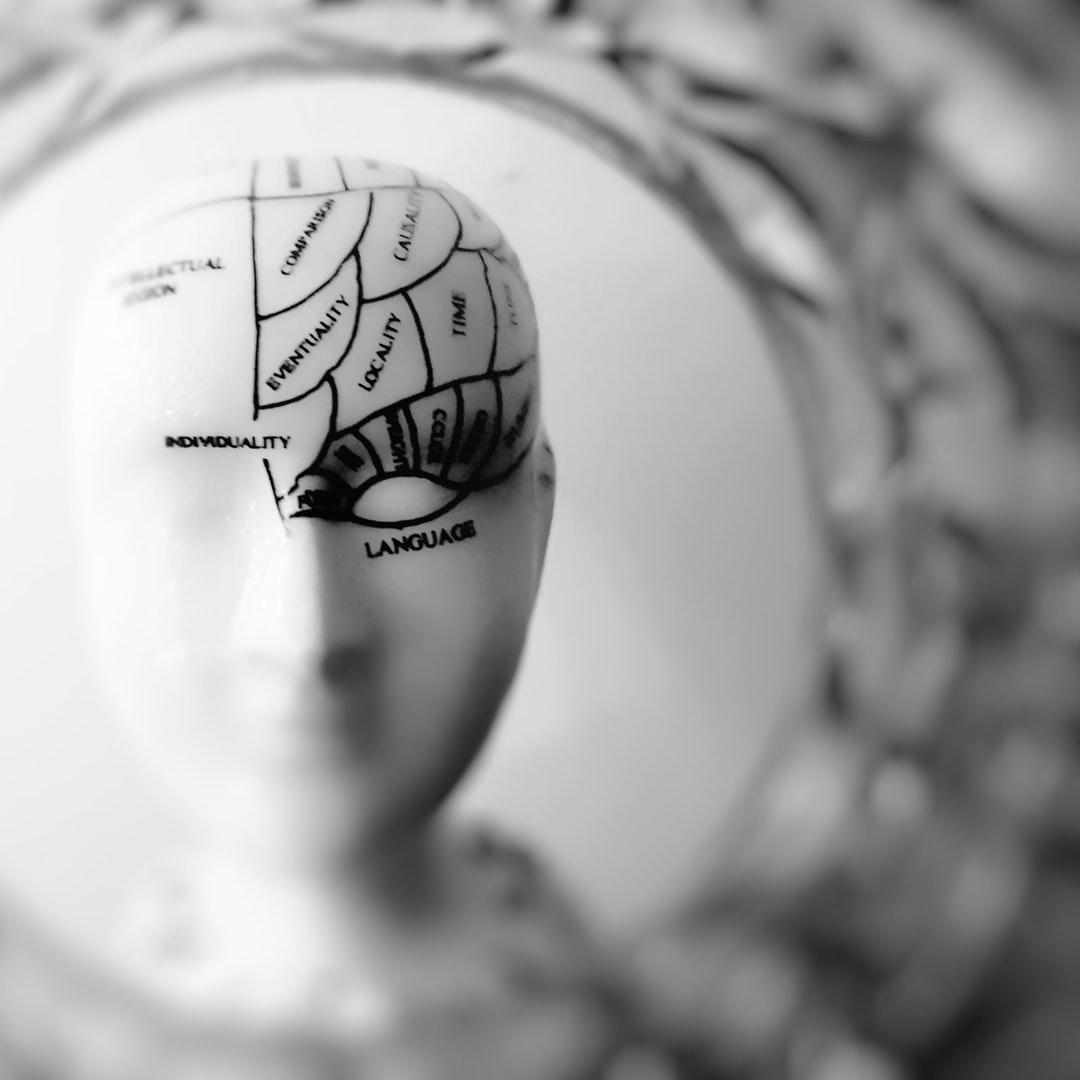 Pós-Graduação em Neuroeducação